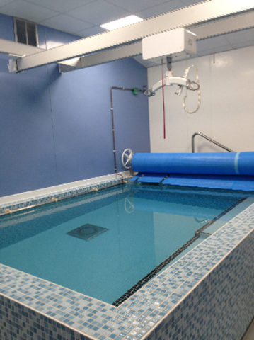 Hydroptherapy pool